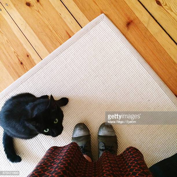Low Section Of Woman Standing By Cat On Doormat Indoors