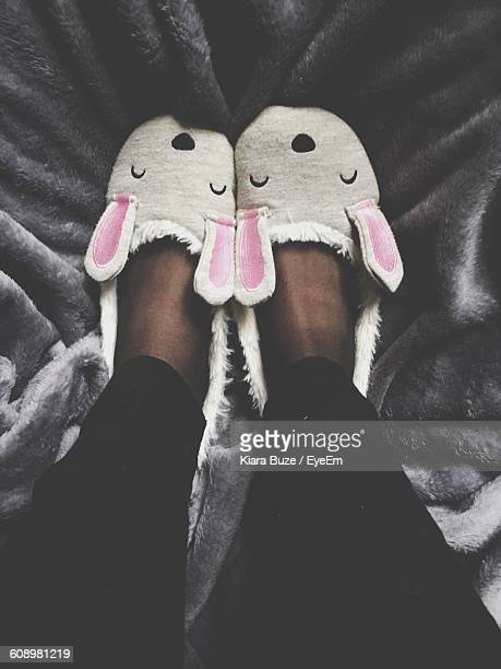 Low Section Of Woman Wearing Bunny Slippers