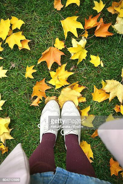 Low Section Of Woman Wearing Shoes Standing On Field With Autumn Leaves