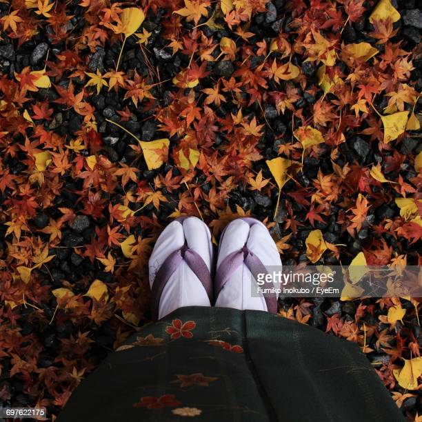 Low Section Of Woman Wearing Socks And Flip-Flop On Autumn Leaves