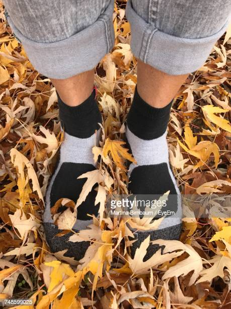 Low Section Of Woman Wearing Socks Standing On Autumn Leaves