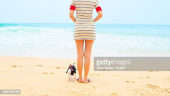 Low Section Of Woman With Chihuahua Dog Standing On Beach By Sea