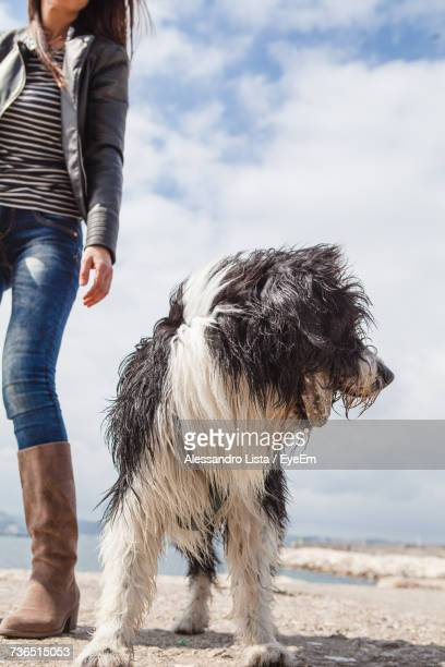 Low Section Of Woman With Dog Against Sky