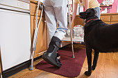 Low section view of a disabled woman in the kitchen with a dog