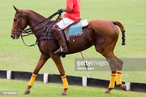 Low section view of a man playing polo : Stock Photo