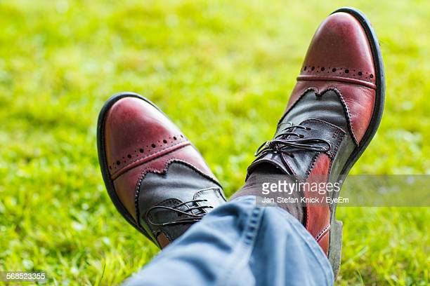 Low Section View Of Man Wearing Leather Shoes In Field