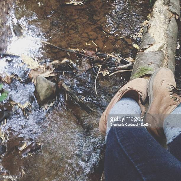 Low Section View Of Person On Fallen Tree Over Stream
