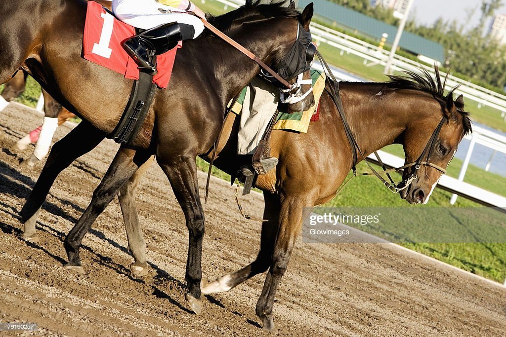 Low section view of two jockeys riding horses on a horseracing track : Stock Photo