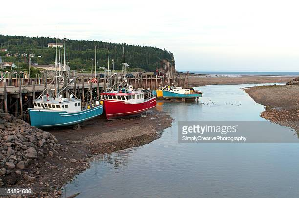 Low Tide at Bay of Fundy