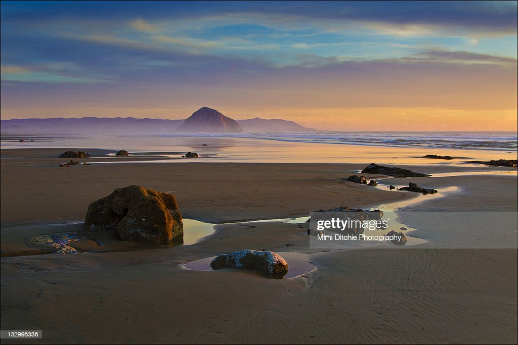 Low tide at Morro Bay strand : Stock Photo