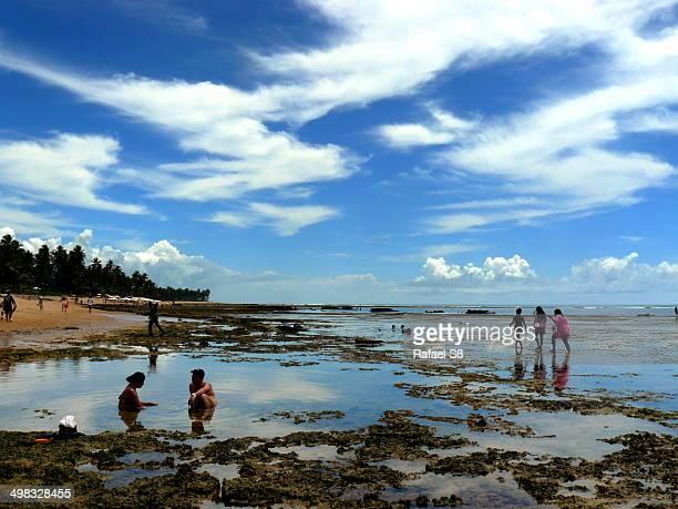 CONTENT] Low tide at Praia do Forte beach Bahia Brazil