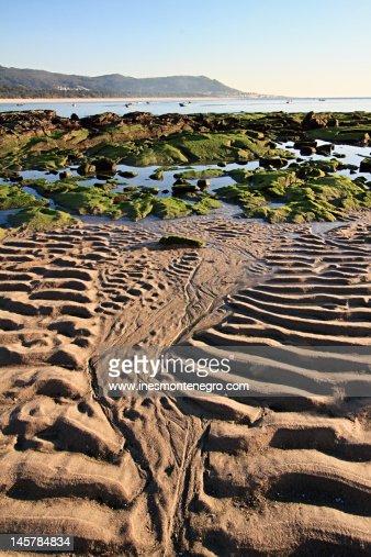 Low tide beach