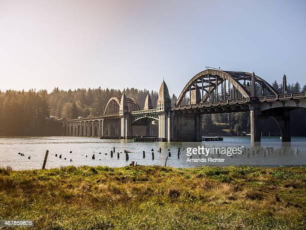 Low tide river bridge
