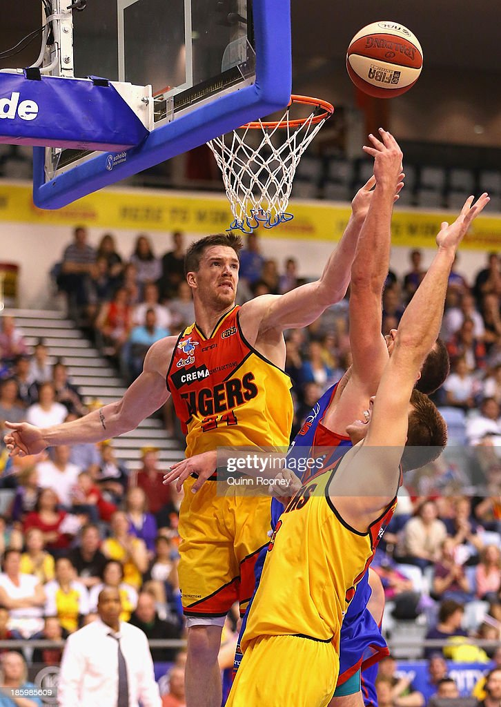 Lucas Walker of the Tigers shoots during the round three NBL match between the Melbourne Tigers and the Adelaide 36ers at the State Netball Hockey Centre in October 27, 2013 in Melbourne, Australia.
