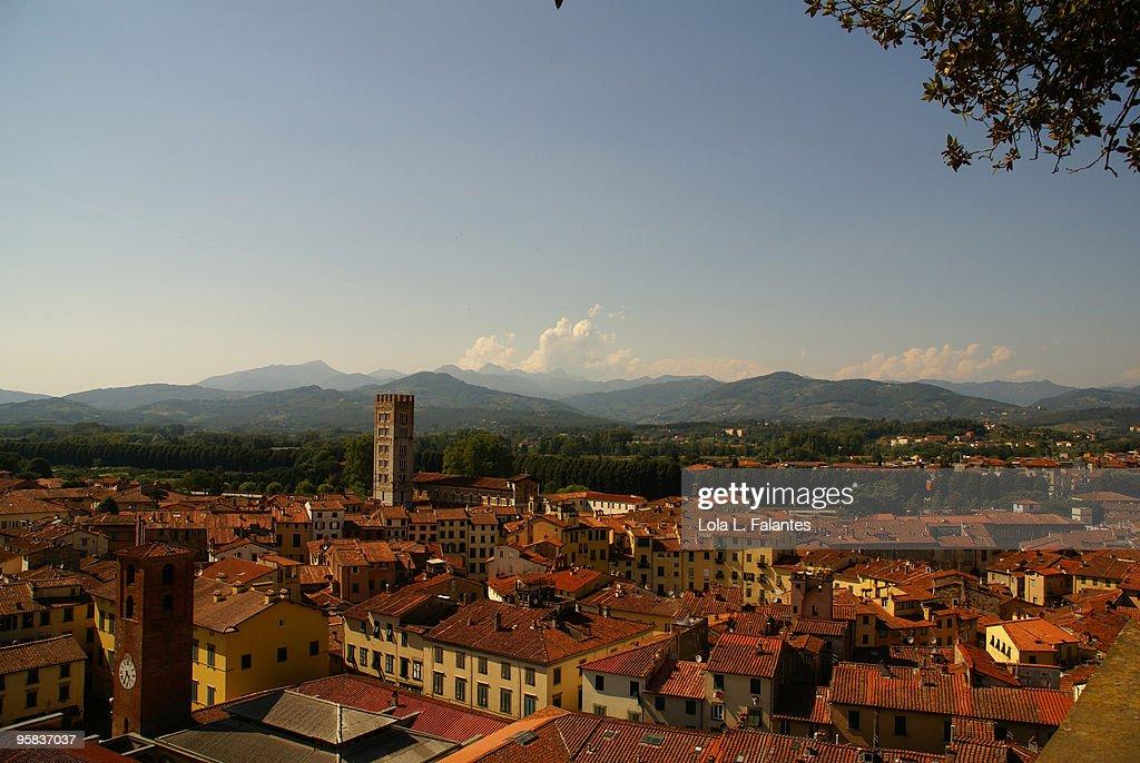 Lucca : Stock Photo