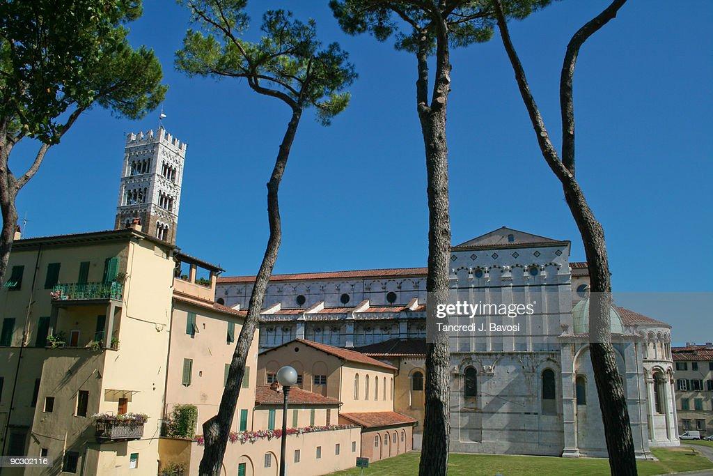 Lucca Tuscany Italy : Stock Photo