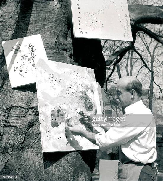Lucio Fontana punches holes on a canvas hanging on the trunk of a tree in the garden of his study in Corso Monforte founder of the Spazialism the...
