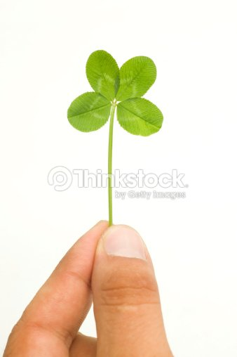 Beati voi mano con quattro foglie di trifoglio foto stock - Immagini di quadrifoglio a quattro foglie ...