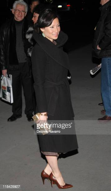 Lucy Liu during '3 Needles' New York Premiere Outside Arrivals at Museum of Modern Art in New York City New York United States