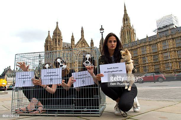 Lucy Watson from 'Made In Chelsea' protests against South Korea's cruel factory farming of dogs on September 12 2016 in London United Kingdom