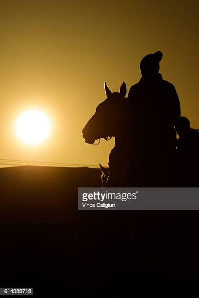Lucy Yeomans riding Jameka after beach work at Mordialloc beach ahead of tomorrows Caulfield Cup on October 14 2016 in Melbourne Australia