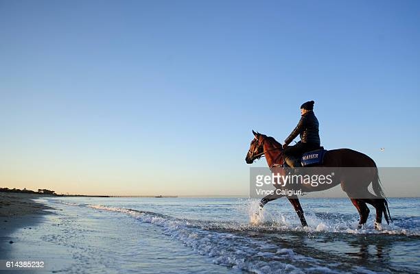 Lucy Yeomans riding Jameka during beach work at Mordialloc beach ahead of tomorrows Caulfield Cup on October 14 2016 in Melbourne Australia