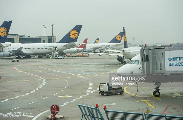 Lufthansa airplanes stand at Frankfurt International Airport during a strike by Lufthansa pilots on December 1 2014 in Frankfurt Germany The pilots...