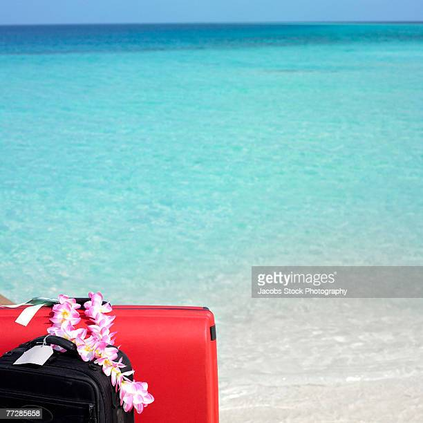 Luggage and lei against tropical ocean