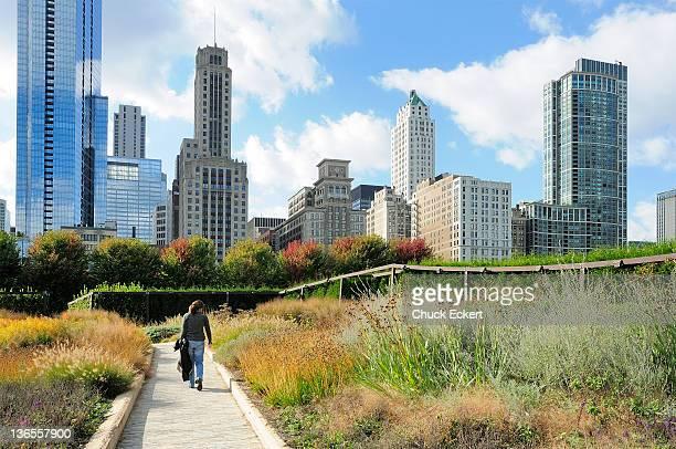 Luie Garden in Chicago's Millennium Park