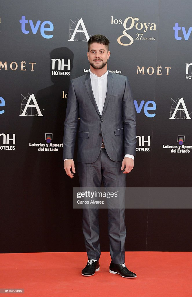 Luis Fernandez attends Goya Cinema Awards 2013 at Centro de Congresos Principe Felipe on February 17, 2013 in Madrid, Spain.