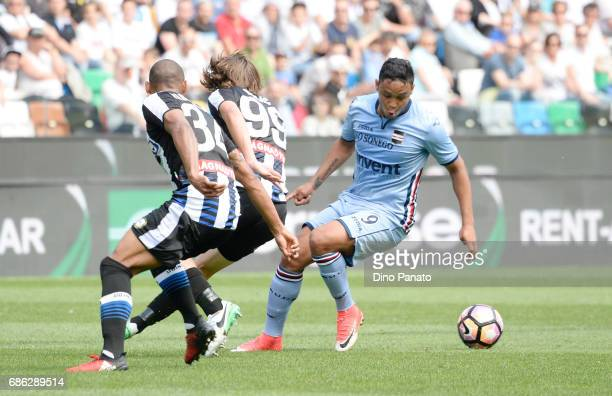 Luis Fernando Muriel of UC Sampdoria competes during the Serie A match between Udinese Calcio and UC Sampdoria at Stadio Friuli on May 21 2017 in...