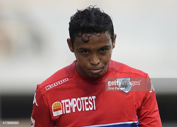 Luis Fernando Muriel of UC Sampdoria looks on during the Serie A match between Udinese Calcio and UC Sampdoria at Stadio Friuli on May 10 2015 in...