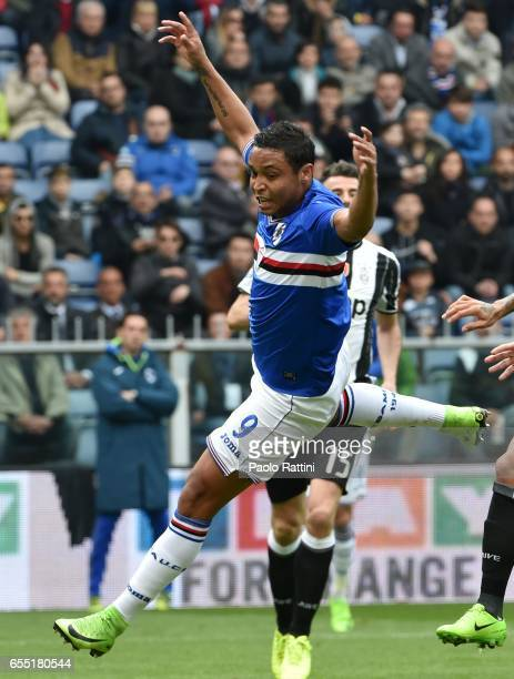 Luis Muriel in action during the Serie A match between UC Sampdoria and Juventus FC at Stadio Luigi Ferraris on March 19 2017 in Genoa Italy