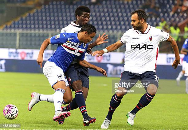 Luis Muriel of Sampdoria is challenged by Domenico Maietta and Gofred Donsah of Bologna during the Serie A match between UC Sampdoria and Bologna FC...