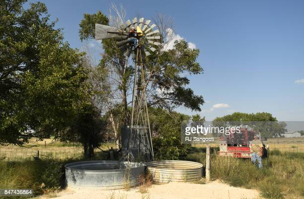 Luis Rico climbs up a windmill as he and Jim Henson both employees of New Banks Pumps work on trying to fix a well on September 12 2017 in Wray...