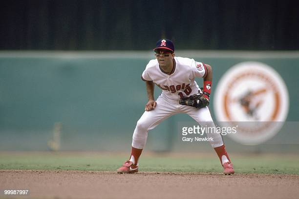 Luis Sojo of the California Angels plays second base during a game against the Oakland Athletics in the 1991 season at Anaheim Stadium in Anaheim...