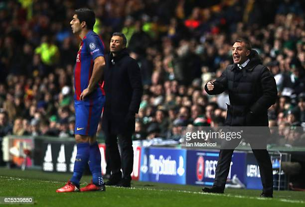Luis Suarez of Barcelona looks on as Brendan Rodgers manager of Celtic gives his team instructions during the UEFA Champions League Group C match...