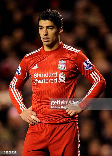 Luis Suarez of Liverpool looks on during the Barclays Premier League match between Liverpool and Stoke City at Anfield on February 2 2011 in...