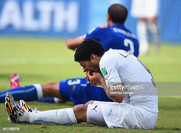 Luis Suarez of Uruguay and Giorgio Chiellini of Italy react after a clash during the 2014 FIFA World Cup Brazil Group D match between Italy and...
