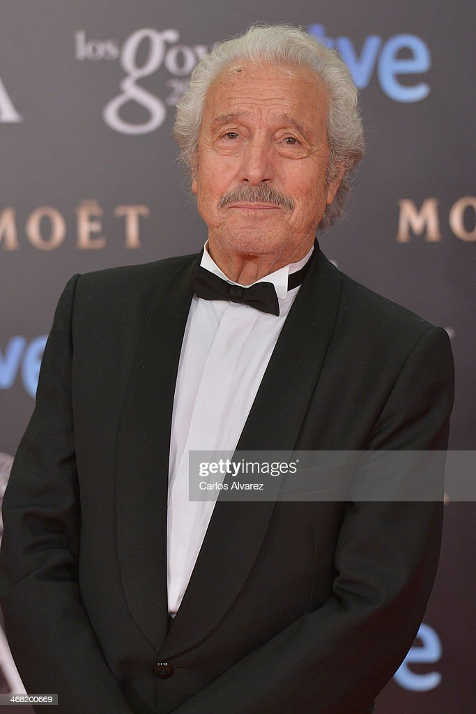Luis Zazo attends Goya Cinema Awards 2014 at Centro de Congresos Principe Felipe on February 9, 2014 in Madrid, Spain.