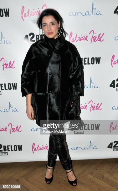 Luisa Ranieri attends Birthday Party for PATRICIA FIELD at Amalia on February 15 2009 in New York City