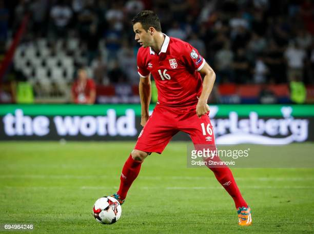 Luka Milivojevic of Serbia in action during the FIFA 2018 World Cup Qualifier between Serbia and Wales at stadium Rajko Mitic on June 11 2017 in...