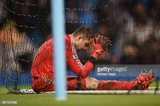 Lukasz Fabianski of Swansea City shows his dejection after conceding the second goal to Manchester City during the Barclays Premier League match...