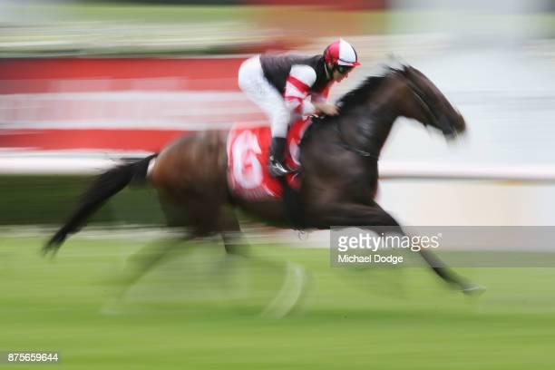 Luke Currie rides during Melbourne Racing at Sandown Lakeside on November 18 2017 in Melbourne Australia