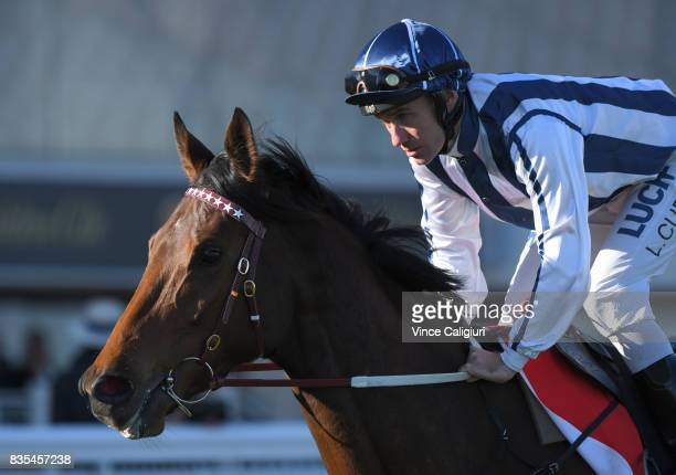 Luke Currie riding Amelie's Star heads to the start of Race 7 PB Lawrence Stakes during Melbourne Racing at Caulfield Racecourse on August 19 2017 in...