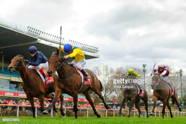 Luke Currie riding Roomooz defeats Craig Williams riding Tulip in Race 3 during Melbourne Racing at Moonee Valley Racecourse on August 26 2017 in...