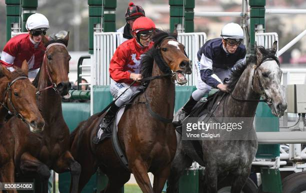 Luke Currie riding Super Haze and Beau Mertens riding Kilimanjaro jump out of barrier start in Race 2 during Melbourne Racing at Flemington...