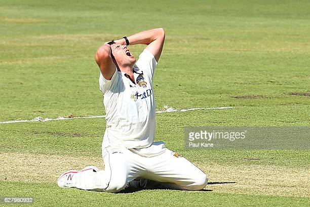 Luke Feldman of Queensland reacts after unsuccessfully appealing for the wicket of Cameron Bancroft of Western Australia during day two of the...