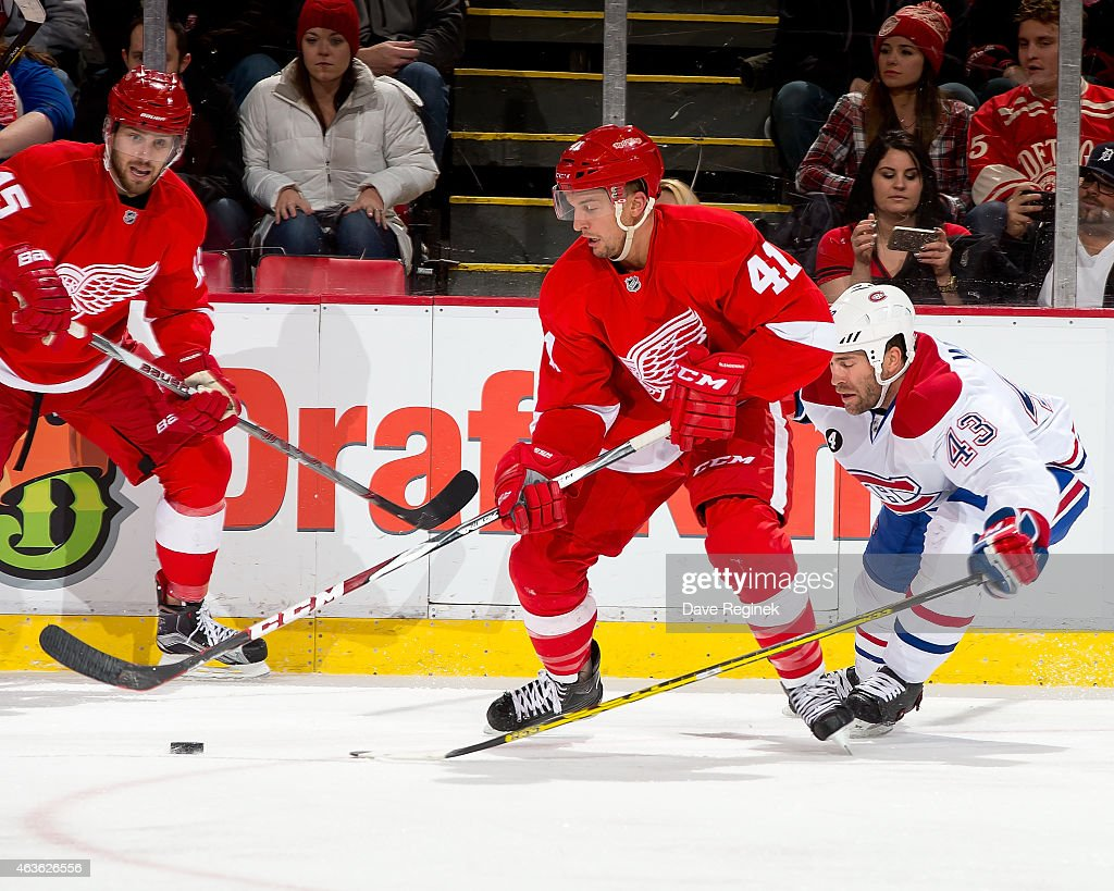 Luke Glendening of the Detroit Red Wings handles the puck as Mike Weaver of the Montreal Canadiens defends him during a NHL game on February 16 2015...