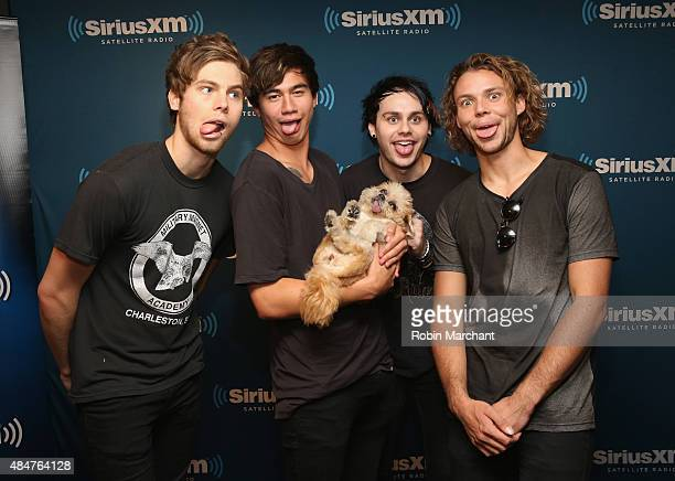 Luke Hemmings Calum Hood Michael Clifford and Ashton Irwin of 5 Seconds of Summer wih Marnie the dog visit at SiriusXM Studios on August 21 2015 in...